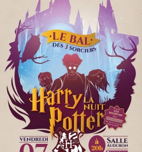 nuit-harry-potter-les-sables-d-olonne