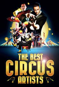 The best circus artists les sables